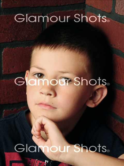 Pet Portraits Photography